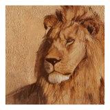 Lion Poster von A. Vargas