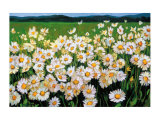 I Love Daisies Prints by Liliane Fournier