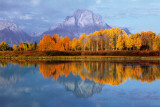 Mount Moran Prints