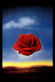 The Rose Poster by Salvador Dal&#237;