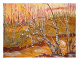 A Golden Sunrise Giclée-Druck von Debra Ventimiglia