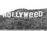 Hollyweed Poster