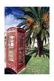 Telephone Booth, Bermuda Photographic Print by George Oze