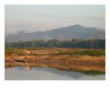 Laotian Landscape Photographic Print by Simon Moore