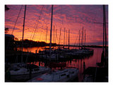 Marina Sunset Photographic Print by Stephanie Cyr