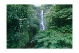Wailua Falls On The Road To Hana, Maui, Hawaii Photographic Print by George Oze