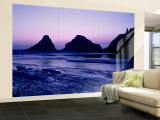 Silhouette of Rock Formations at Dusk, Devil's Elbow State Park, Oregon, USA Wall Mural – Large