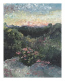 Arkansas Mountain Sunset Giclee Print by Nadine Rippelmeyer