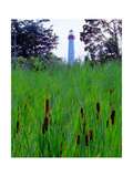 Cape May Point Lighthouse, New Jersey Photographic Print by George Oze
