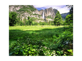 Valley View Of The Yosemite Fall, California Photographic Print by George Oze