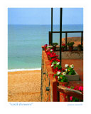 Wall Flowers, Costa Brava, Spain Photographic Print by Jamie Marsh