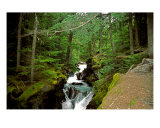Avalanche Gorge Photographic Print by Paul Huchton