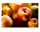 Apples With Drops Of Water Photographic Print by Alexander Efimov