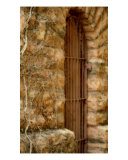 Gated Door In Stone Photographic Print by Debbie Vinci