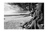 Carmel Beach Photographic Print by George Oze