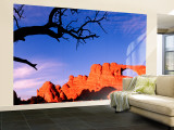Skyline Arch, Arches National Park, Utah, USA Wall Mural – Large