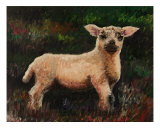 Precious Lamb Giclee Print by Nadine Rippelmeyer