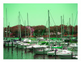 Marina Photographic Print by Sheila Mccrea