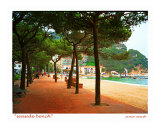 Seaside Bench, Costa Brava, Spain Photographic Print by Jamie Marsh