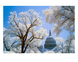 Us Capitol Building, Color Infrared Photographic Print by M. T. Harmon