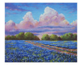 Rain For The Bluebonnets Giclee Print by David G. Paul