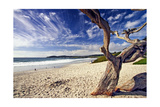 Carmel Beach, California Photographic Print by George Oze