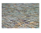 Roof Tiles Photographic Print by Henrik Lehnerer