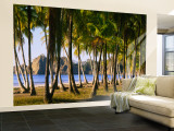 Palm Trees on the Beach, Carrillo Beach, Nicoya Peninsula, Guanacaste Province, Costa Rica Fototapete – groß