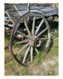 Wagon Wheel Photographic Print by Earl Adams