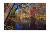 Lamington River At Tewksbury, New Jersey Photographic Print by George Oze