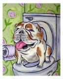Bulldog Going To The Bathroom