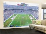 NFL Football, Ericsson Stadium, Charlotte, North Carolina, USA Veggmaleri – stort