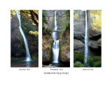 Waterfalls Of The Columbia River Gorge Photographic Print by Yvonne Mestre