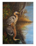 Great Blue Heron Giclee Print by Suzanne Barrett Justis