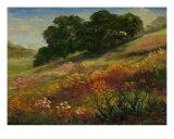 Calistoga Hillside Giclee Print by Edward Duarde