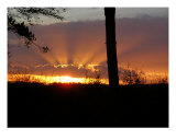 Sunset Photographic Print by Gill Martin