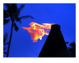 Sunset Fire Photographic Print by Donald Bitterman
