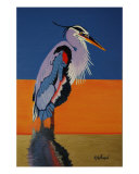 Great Blue Heron Giclee Print by harold w hoffman