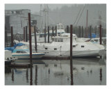 Boat dock in harbor Photographic Print by Cheryl Crowe