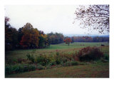 October Pasture Photographic Print by Anne Gregory
