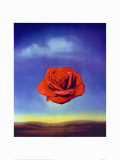 The Meditative Rose, 1958 Art par Salvador Dalí