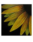 Sunny Side Giclee Print by Joshua Macfie