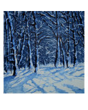 So Much Snow Giclee Print by Veronique Radelet