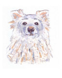 Little White Dog, Scout Giclee Print by Kristin Morris