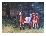 Goat Friends Giclee Print by Suzanne Barrett Justis