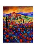 Tuscany Poppies Giclee Print by  Ledent