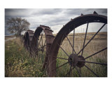 Wheel Row Photographic Print by Joel Stuthman