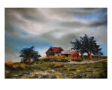 Old Barn Giclee Print by Veronique Radelet