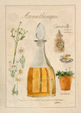 Aromatherapie, Camomille Poster par Laurence David