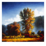 Autumn Morning II Giclee Print by J.m. Steele